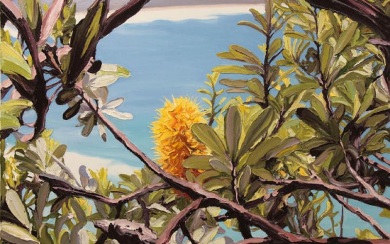 Coastal Banksia Giclee art print of Original Artwork  by Steve Tyerman