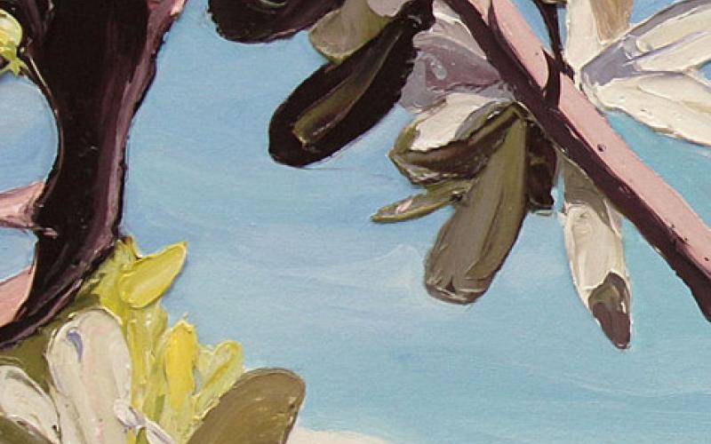 Coastal Banksia Giclee art print of Original Artwork by Steve Tyerman 1980229262