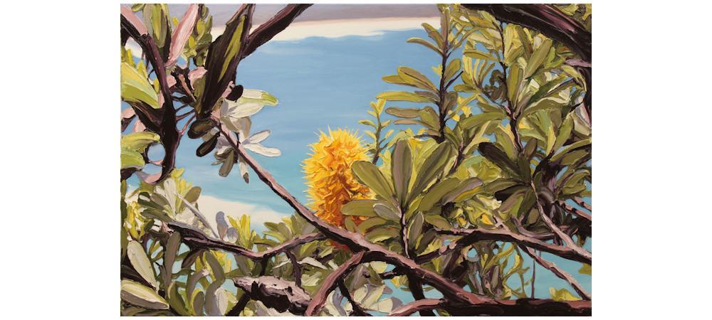 Coastal Banksia by Steve Tyerman