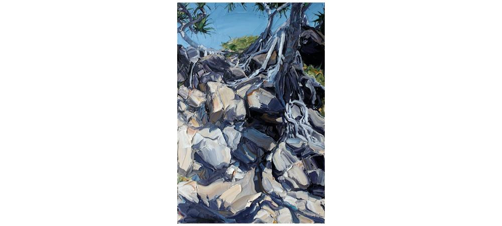 Rocks 'n Roots by Steve Tyerman
