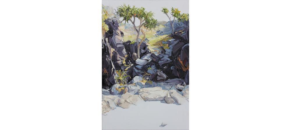 We Found A Hiding Place Amongst The Rocks by Steve Tyerman